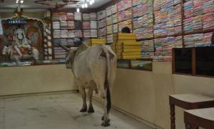 Varanasi-2-1024x617