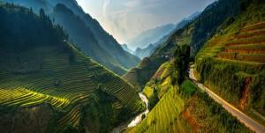 main-Vietnam-1024x517